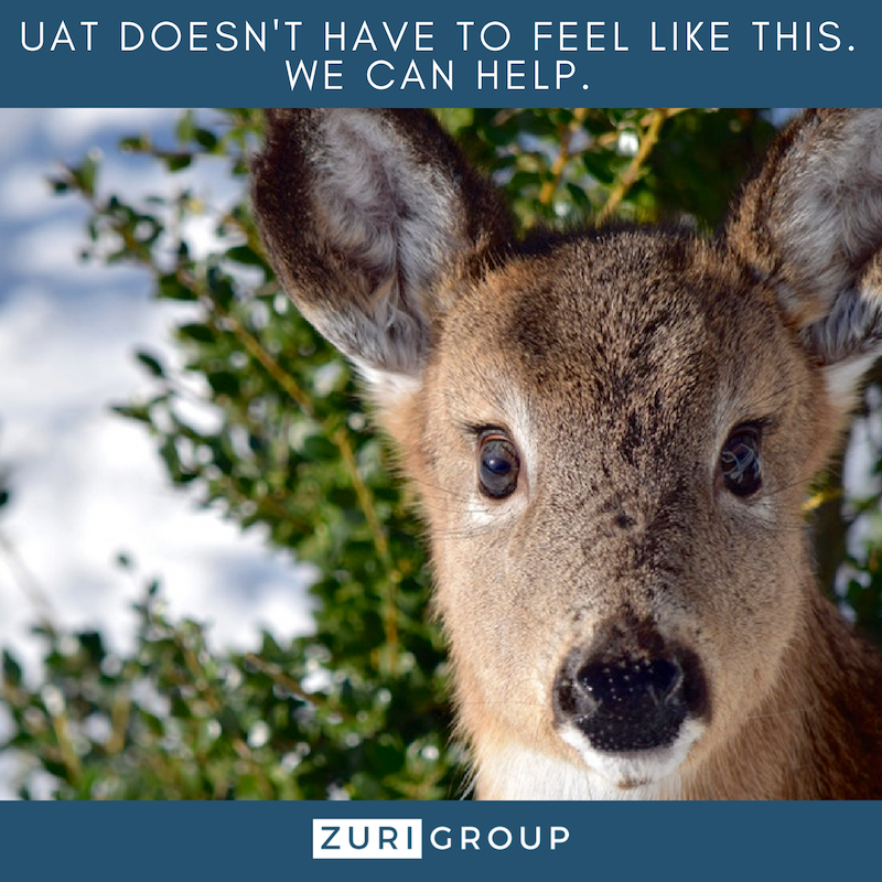 User Acceptance Testing doesn't have to make you feel like a deer in the headlights - Zuri Group can help
